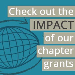 chapter-grants-impact